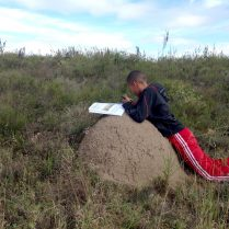 Who needs a table when a Termite mound will do