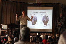 Rhinos explained